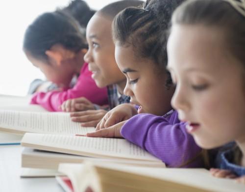 diversity reading