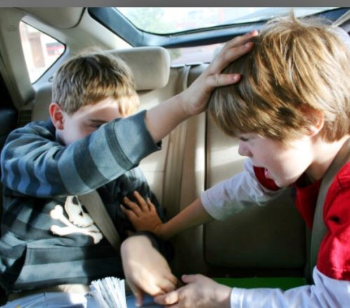 kids fighting in the backseat of car